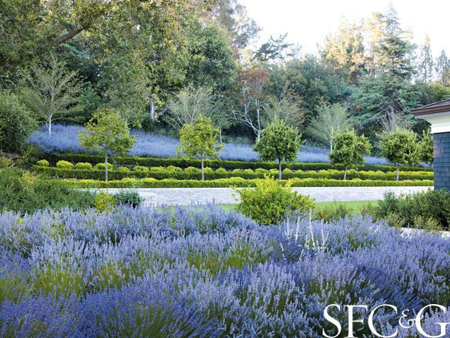 Andrea-Cochran-2014-Cooper-Hewitt-Design-Award-for-Landscape-Architecture-Atherton-Formal-Garden-1